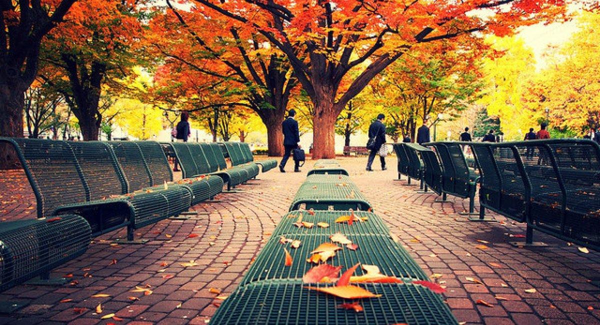 Sapporo in autumn